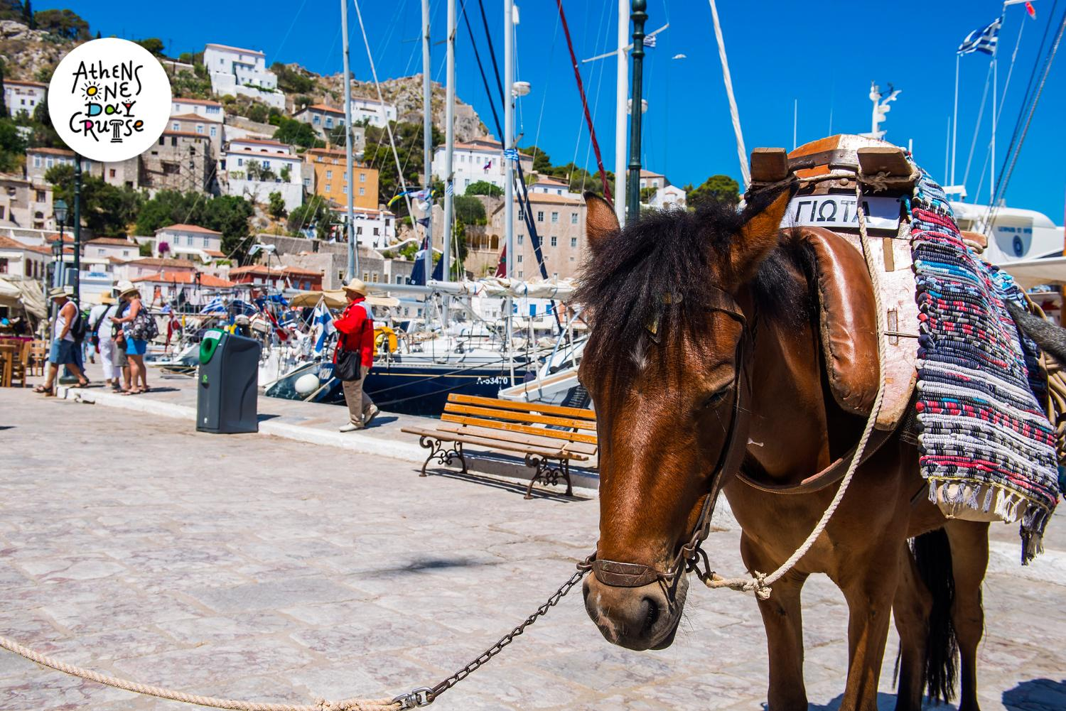 Hydra - A Saronic island full of history and secrets - Hydraiki One Day Cruise